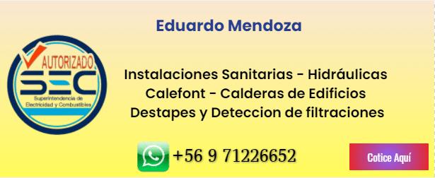 Eduardo Mendoza -Gasfiter sec
